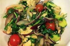 鶏肉とパクチーのサラダ タイ風