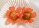 プチトマトのお花