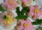 春爛漫✿お花畑みたいなちらし寿司❀
