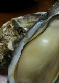 簡単!蒸しガキ☆~殻つき牡蠣が簡単に♪