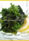 ➏❀旬❀菜の花とワカメの中華ドレ和え➏