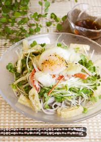 柚子胡椒のピリ辛☆サラダ蕎麦