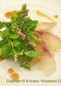 花わさびと桜鯛のカルパッチョ