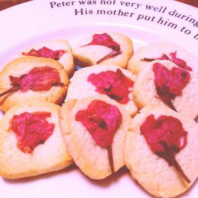 *春*桜のきなこクッキー