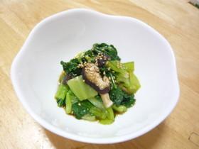 チンゲン菜とシイタケの中華風おひたし
