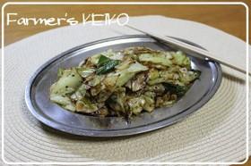 【農家のレシピ】キャベツのマヨネーズ炒め