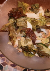 ✿バルサミコ酢のサニーレタスサラダ