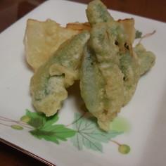 旬な味 スナップえんどうの天ぷら