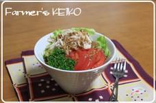 【農家のレシピ】ささみとレタスのサラダ