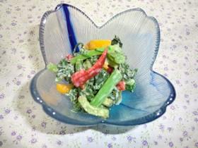 大根菜とパプリカのサラダ