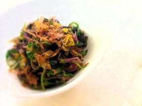美味しい野菜:せりのおひたし