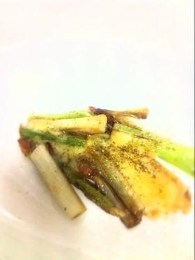 美味しい野菜:ネギのアーリオオーリオ