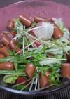 水菜とレタスとトマトのサラダ