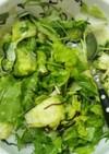 レタスと水菜の塩こんぶサラダ