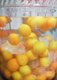 オンナノコの はちみつ金柑酒