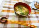 小松菜&豆腐の味噌汁