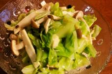 キャベツとキノコの塩麹サラダ