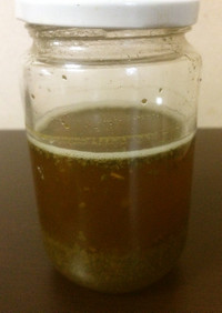 お茶酵母~緑茶~