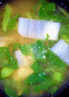 ツルムラサキと大根のお味噌汁