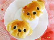 いぬパン まる顔シーズー犬の写真