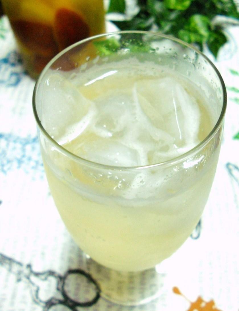 グビグビ飲めちゃうサングリア(炭酸入り)