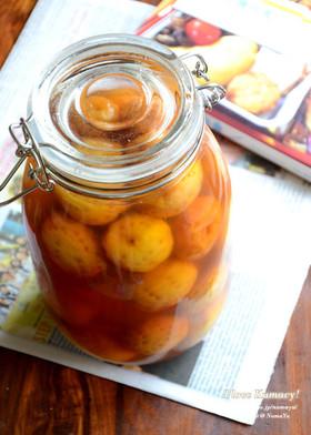 林檎酢と三温糖と蜂蜜で琥珀色の梅シロップ