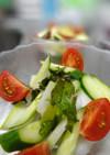 冬瓜とキューリのさっぱりサラダ