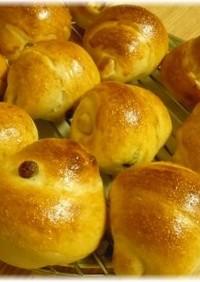 酵母種でレーズンロールパン