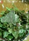 エゴマの葉のサラダ