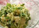 豆苗ポテトサラダ