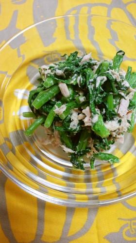 春菊のツナサラダ