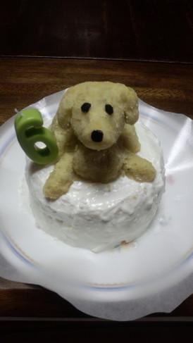☆犬用birthdayケーキ☆