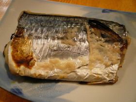 サゴシ(サワラ)の塩麹焼き