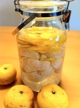 今が旬☆濃厚☆柚子酒の作り方