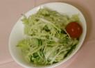 病院給食で本当に出た生野菜のサラダ