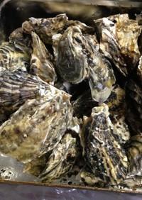 ずぼら蒸し牡蠣