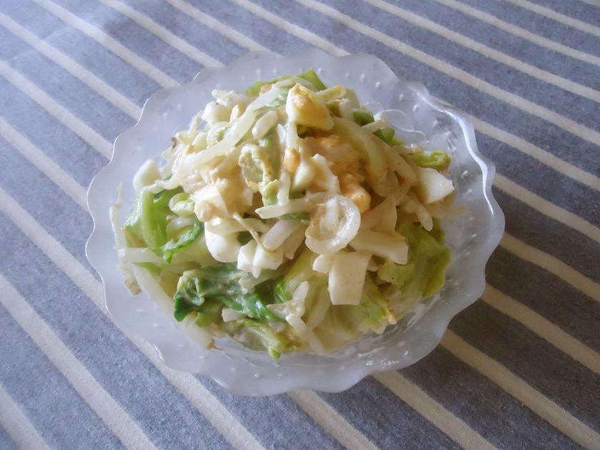 キャベツともやしの味噌たまヨ☆サラダ