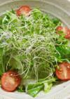 鎌田のだし醤油de簡単絶品サラダ
