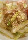 大量★白菜の柚子胡椒風味サラダ