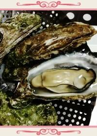 ❤殻付き牡蠣❤ フライパンで簡単調理