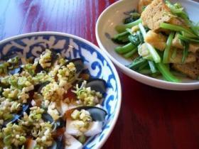 定番ピータン豆腐!
