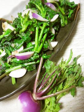 つぼみ菜とあやめ雪蕪のアンチョビソテー