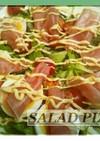 ■サラダピザ ガーリックソースで。