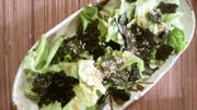 朝・昼・夜・後ひくレタスごま風サラダ♥の写真