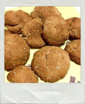 妊婦も安心!超ローカロリー簡単クッキー