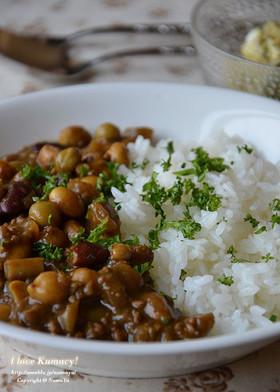 大豆とゴボウと挽肉の薬膳風カレー
