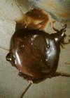 私のチョコレートソースの作り方