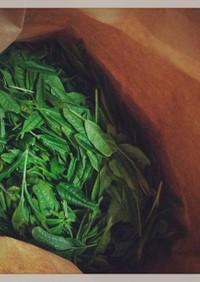 生茶葉料理2013