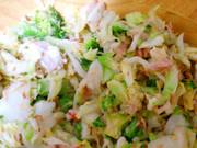 簡単*美味しい 和風ツナキャベツサラダの写真