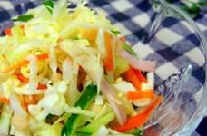 きゅうりとキャベツの揚げ玉入りサラダ